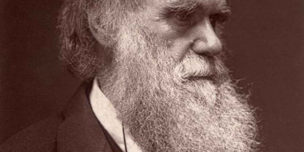 charles darwin westminster abbey