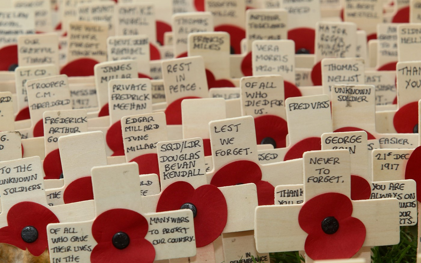 100,000 crosses in 388 plots make up this year's Field of Remembrance