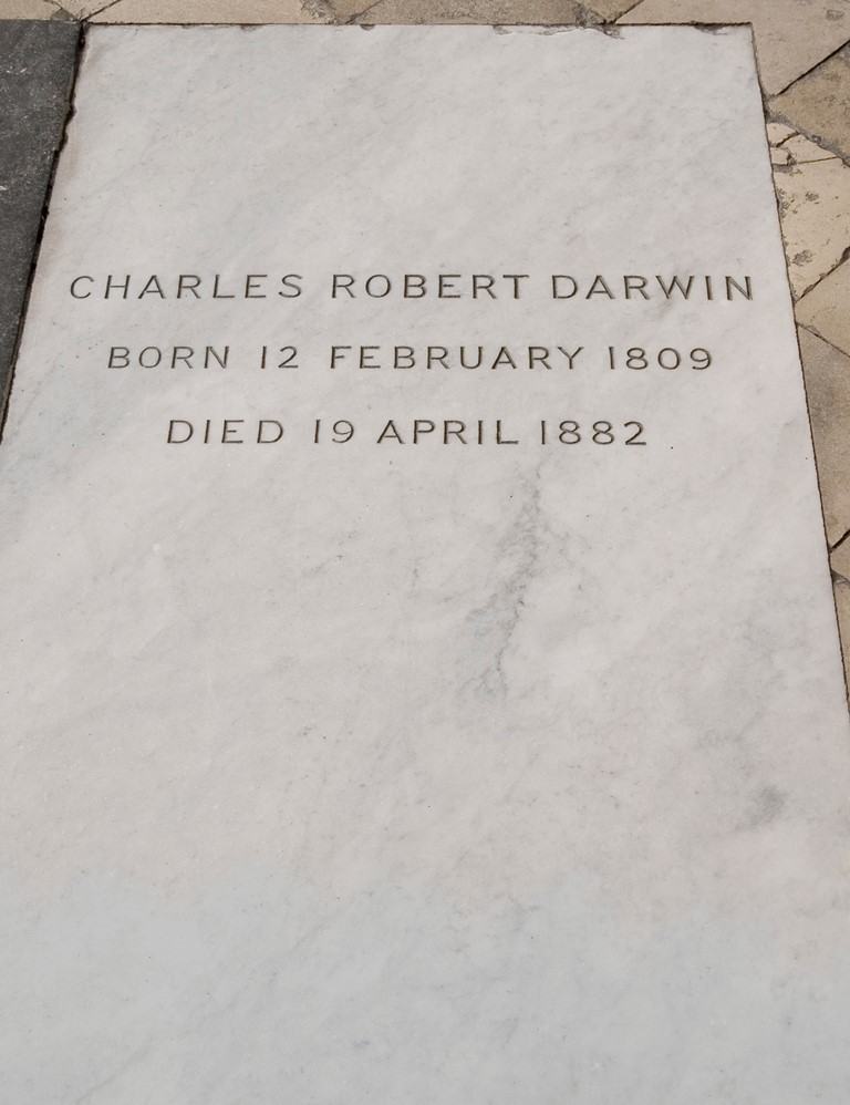 The grave of Charles Darwin